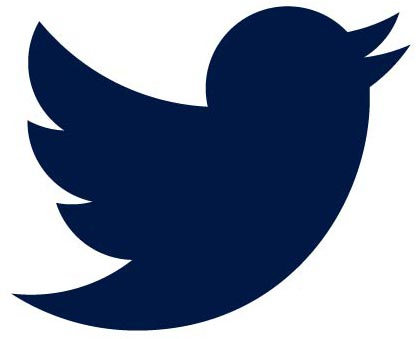 Icon of twitter bird